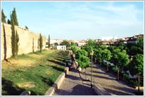 Muralla del Marrubial